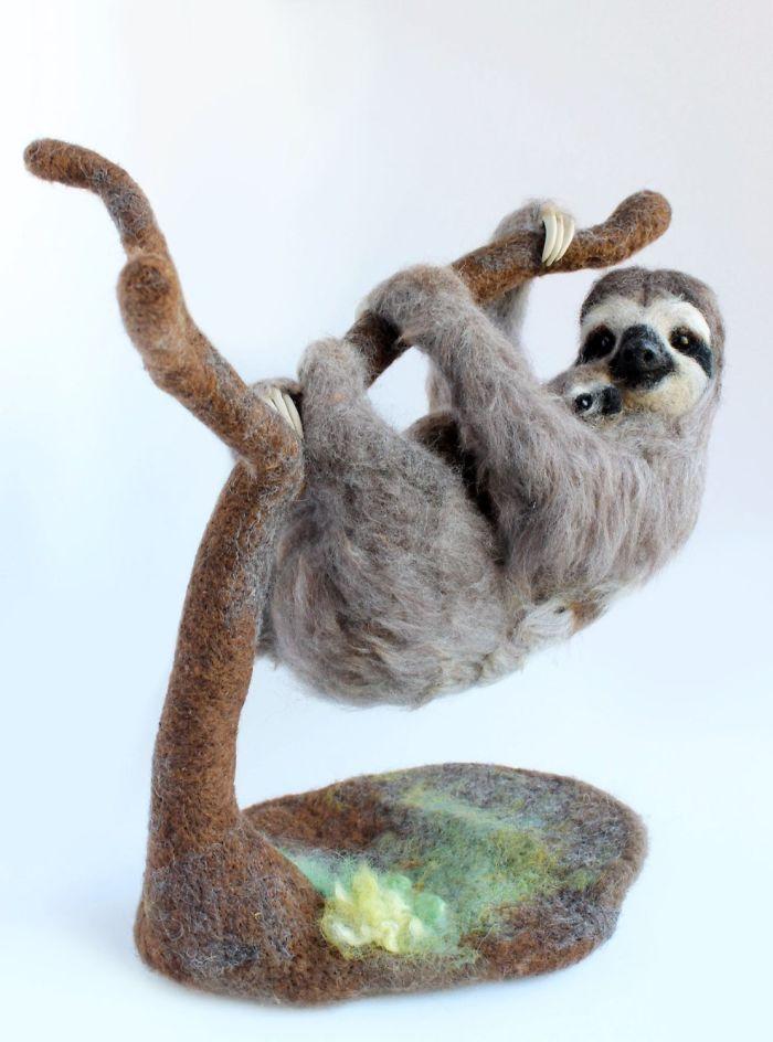 Three-Toed Pygmy Sloth