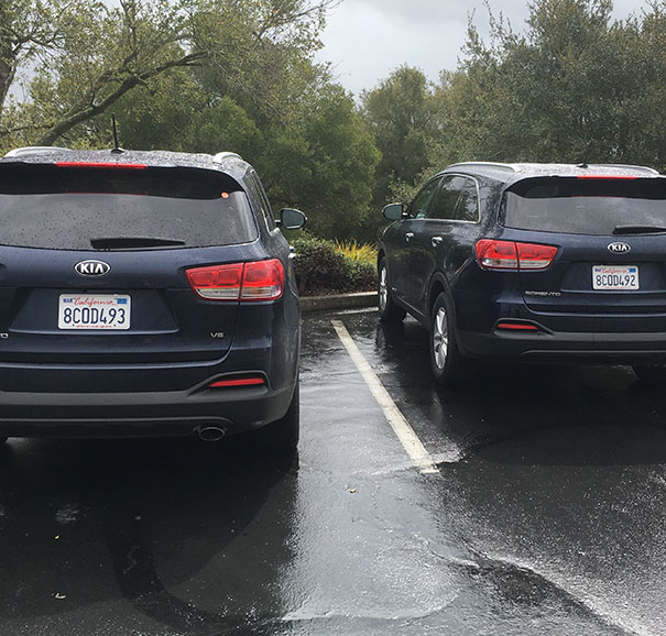 My Rental Car Is On The Left. Parked At A Winery And Came Outside To Find This
