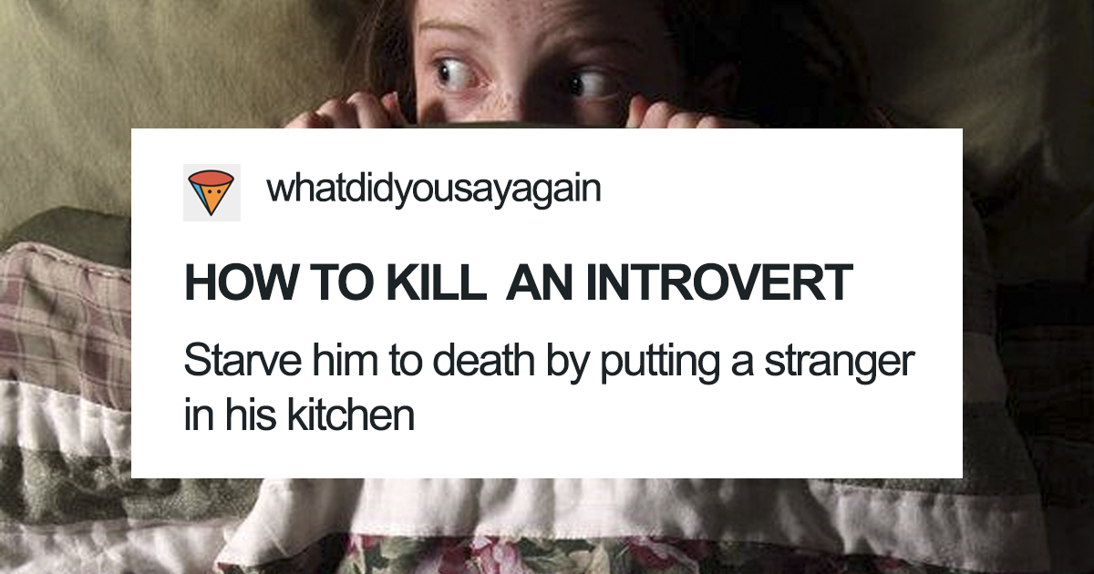 37+ Funny Introvert Tumblr Posts To Read While You Hide From People