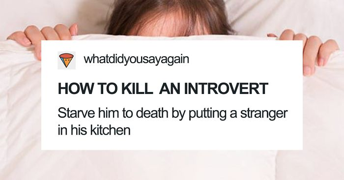 51 Times Tumblr Made Introverts Laugh Out Loud