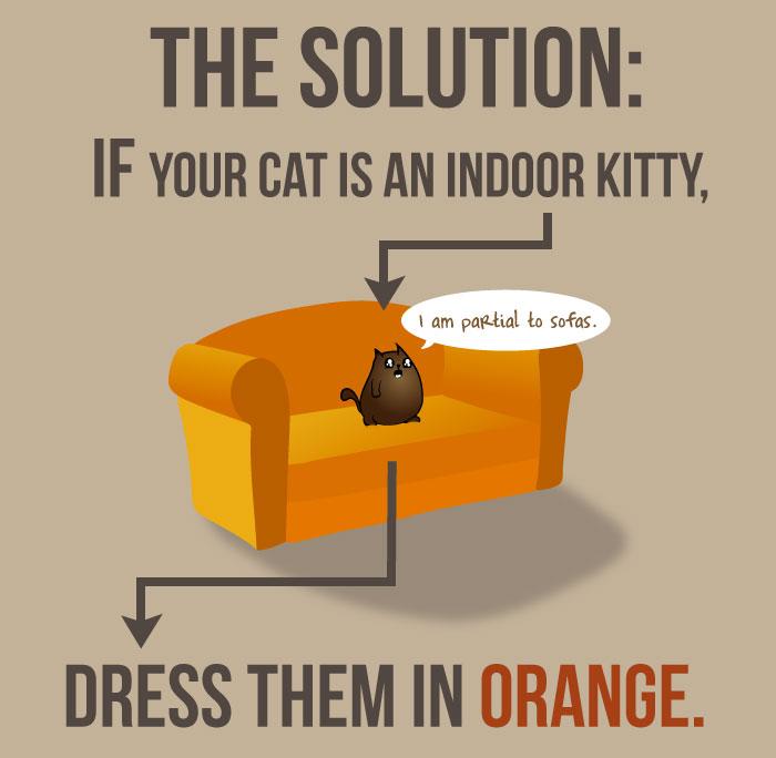 lost-indoor-cat-collar-infographic-explo