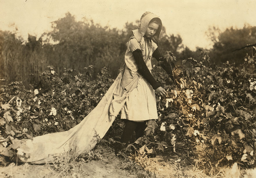 """Callie Campbell, 11 Years Old, Picks 75 To 125 Pounds Of Cotton A Day, And Totes 50 Pounds Of It When Sack Gets Full. """"No, I Don't Like It Very Much."""" Location: Potawotamie County, Oklahoma"""