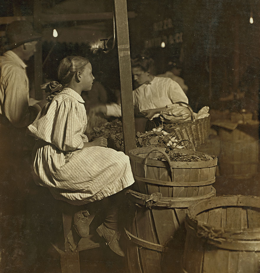 """""""Radishes! Penny A Bunch!"""" Sixth St. Market, Cincinnati. 10 P.m. Saturday. Boys And Girls Sell All Day, And Until 11 P.m. Aug.22, 1908. Location: Cincinnati, Ohio"""