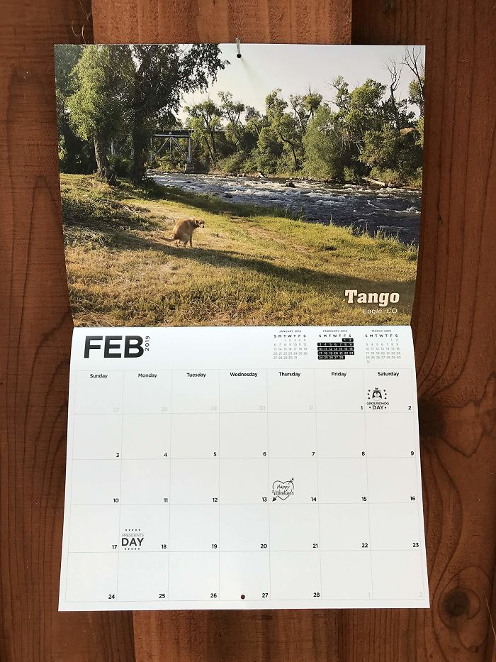 2019 Pooping Dog Calendar Is Here, And It's The Crappiest Calendar We've Ever Seen