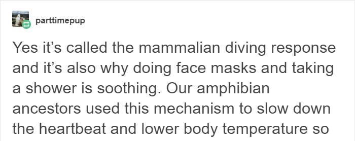 water-on-face-mammalian-diving-response-calming-peaceful-2