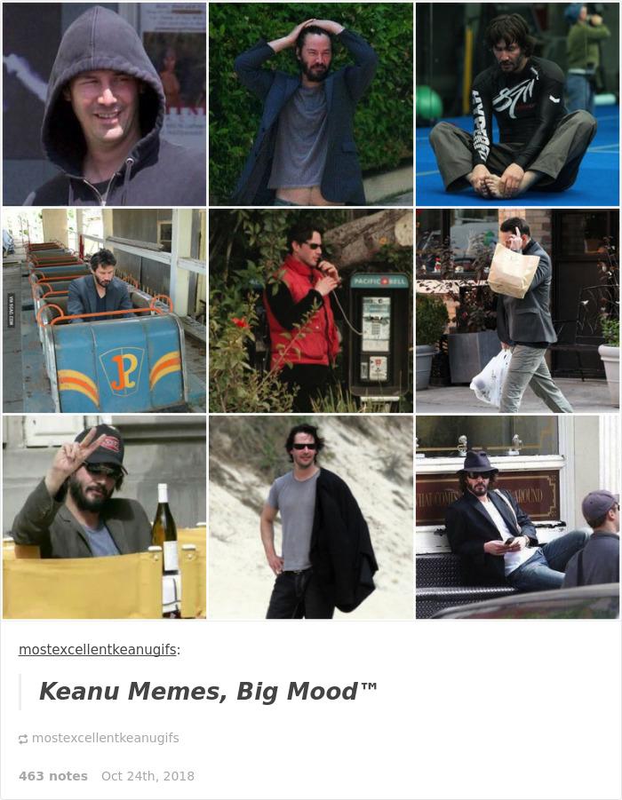 25 Best Memes About Sad Keanu On A Bench Meme Sad Keanu On A Bench Memes