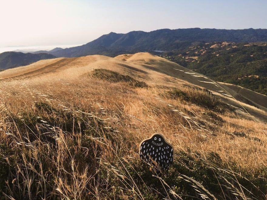 #lylesighting - White's Hill And Mount Tamalpais, Ca