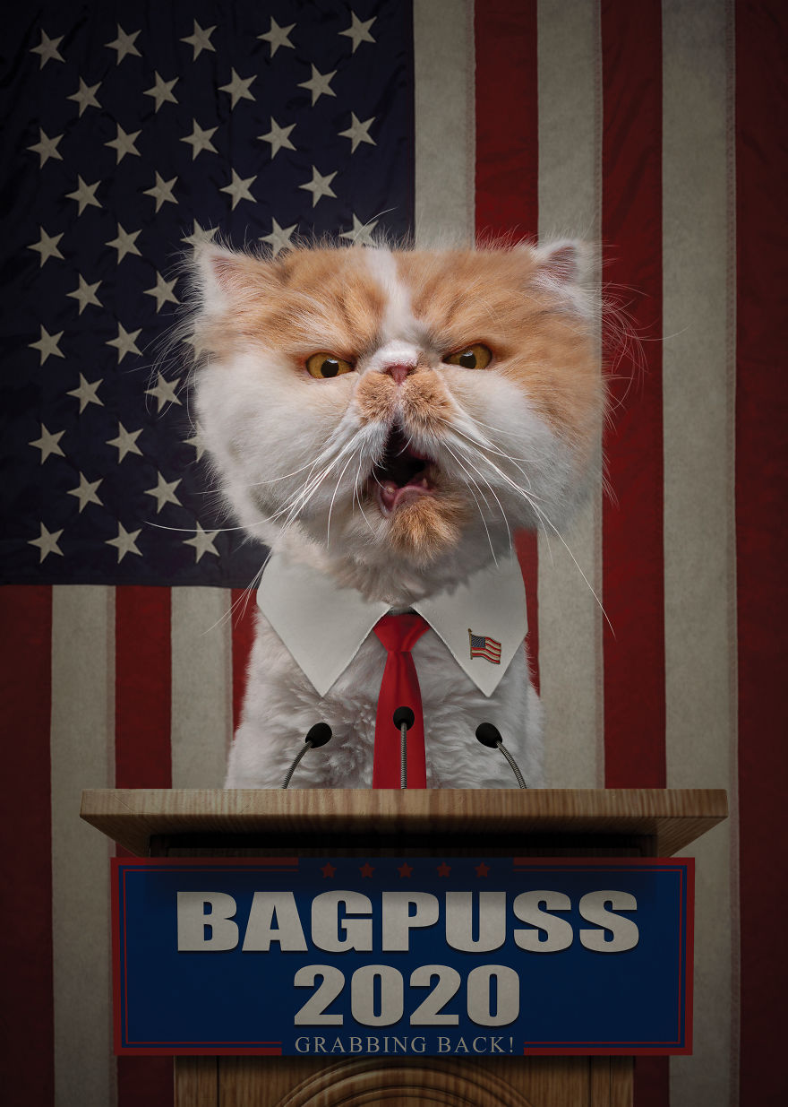 Vote 1 Bagpuss