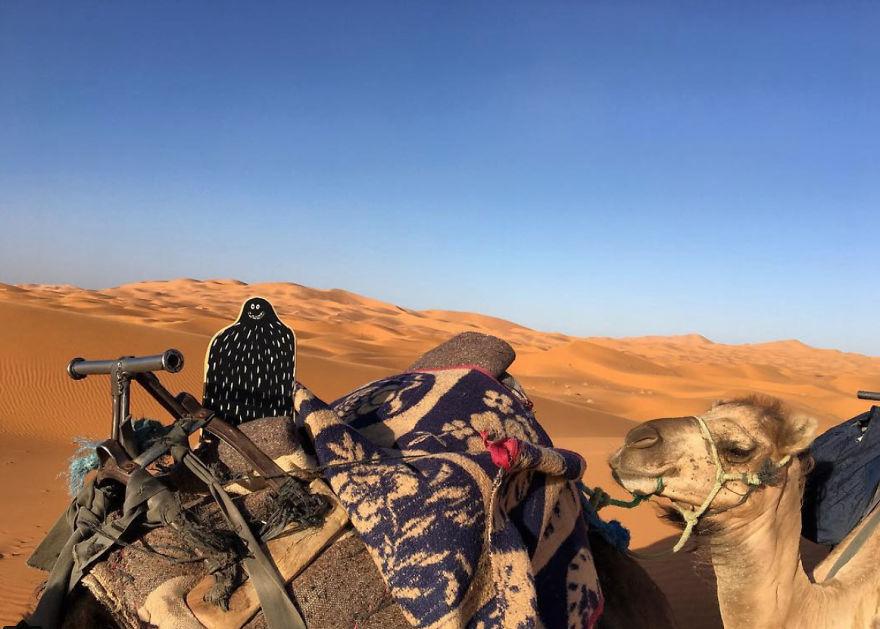 #lylesighting - Morocco
