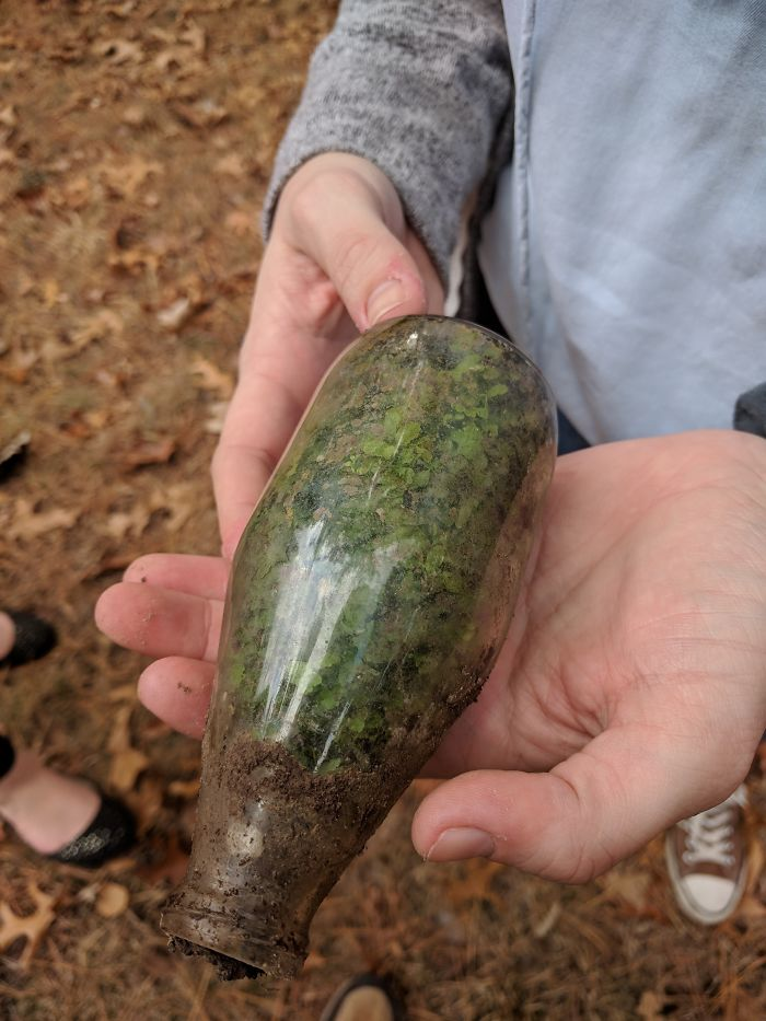 My Girlfriend Found A Bottle In The Woods That Had A Terrarium Growing Naturally Inside
