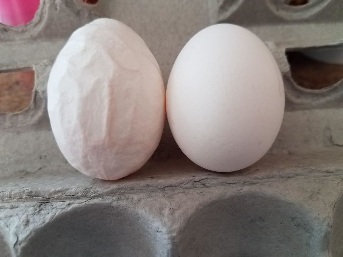 I Found A Wrinkled Egg In My Store-Bought Eggs