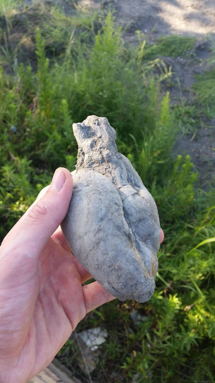 I Found A Rock Shaped Like A Heart