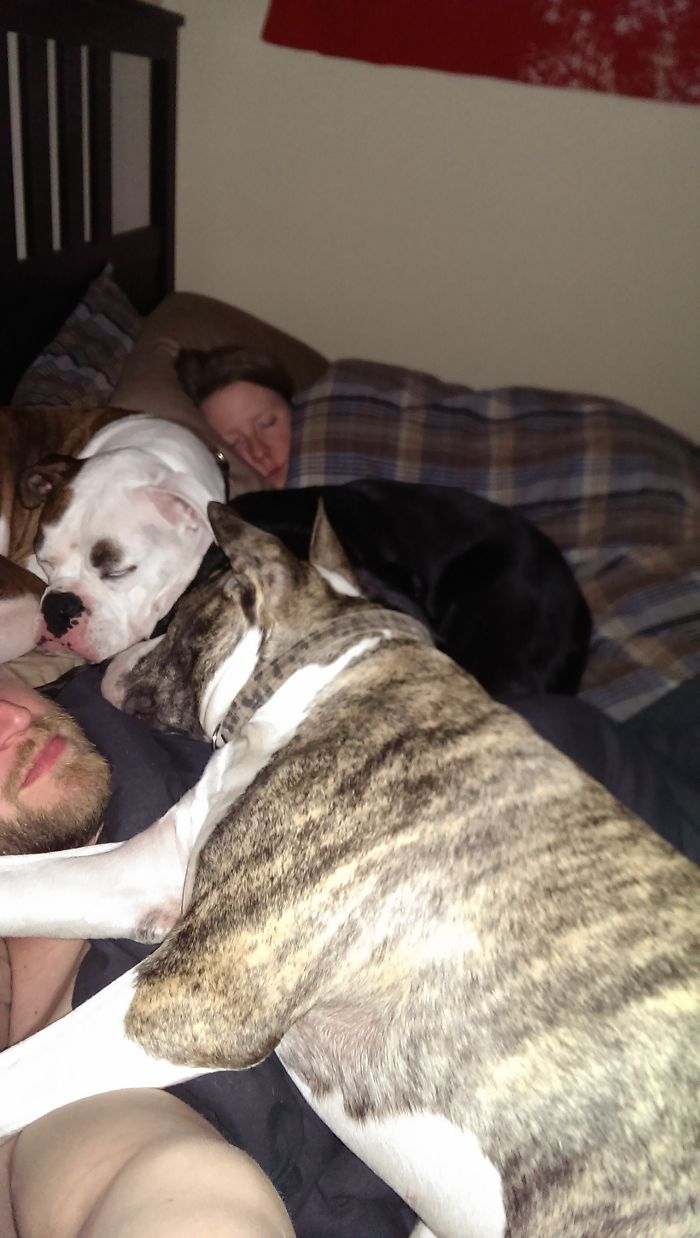 Tras meses negándolo y muchas noches en el sofá, aquí está la prueba de por qué mi esposa duerme mejor que yo