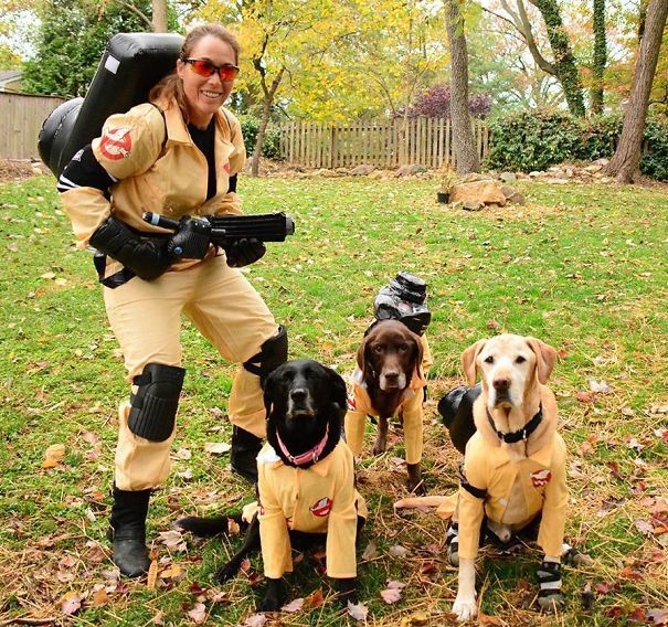 I Heard They Were Remaking Ghostbusters With B*tches But This Is Ridiculous