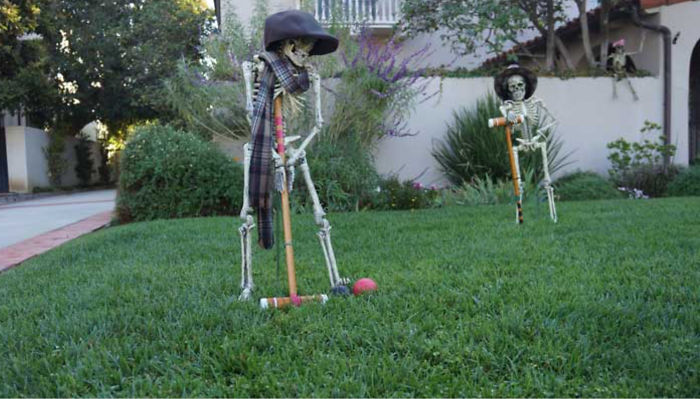So...... Who Wants To Play A Game Of Croquet????