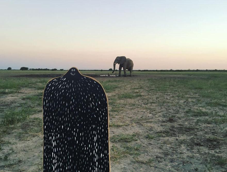 #lylesighting - Kalahari, Botswana