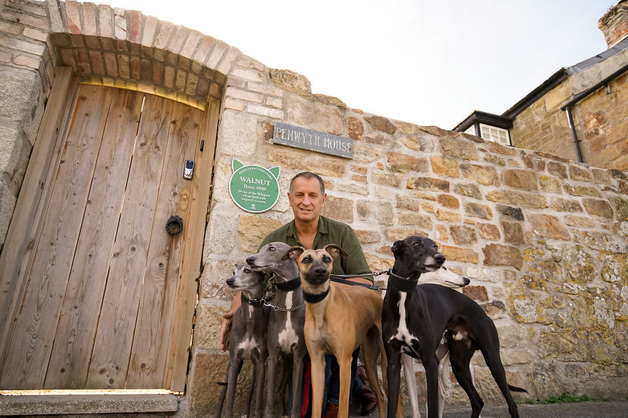 A New Plaque Scheme Has Launched And It's All About Celebrating Amazing Animals