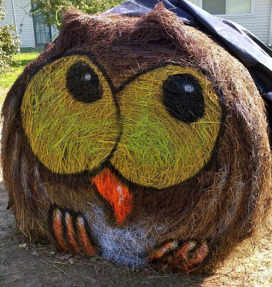 Owl- One Of The First Designs And Still A Favorite For The Kids