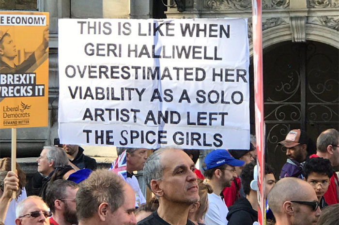 25+ Of The Funniest Signs From The Anti-Brexit March