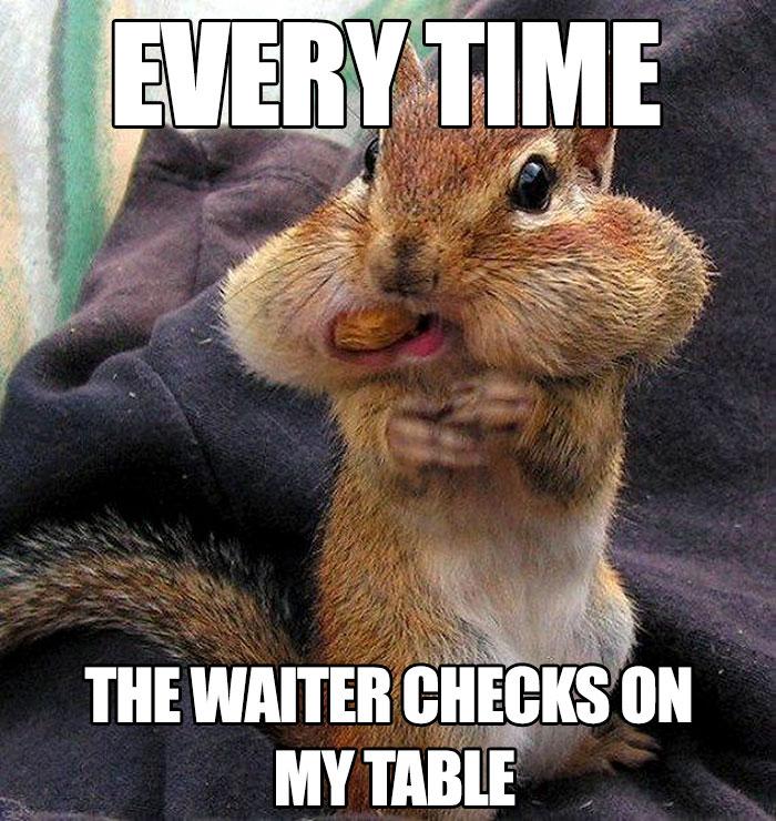 memes funny hilarious