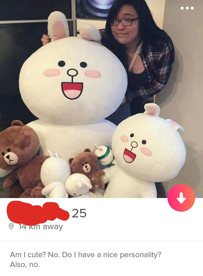 Gotta Appreciate Honest Tinder Profiles