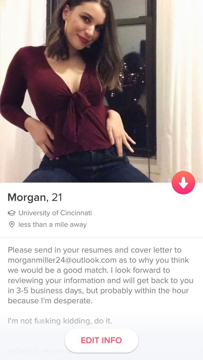 I Changed My Tinder Bio To This A Few Months Ago And I Get Emails On A Regular Basis From Guys Applying To Go On A Date With Me