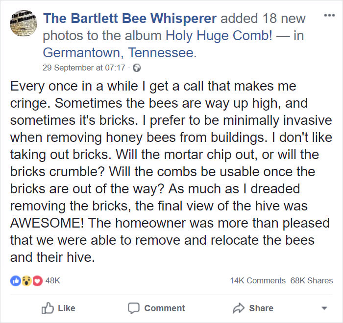 huge-beehive-the-barlett-bee-whisperer-30