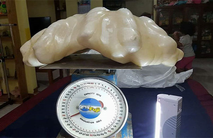 Fisherman Found A Giant Pearl, Weighing 34kg, But Wasn't Aware The $100 Million Pearl Was So Valuable And Kept It As A Luck Charm