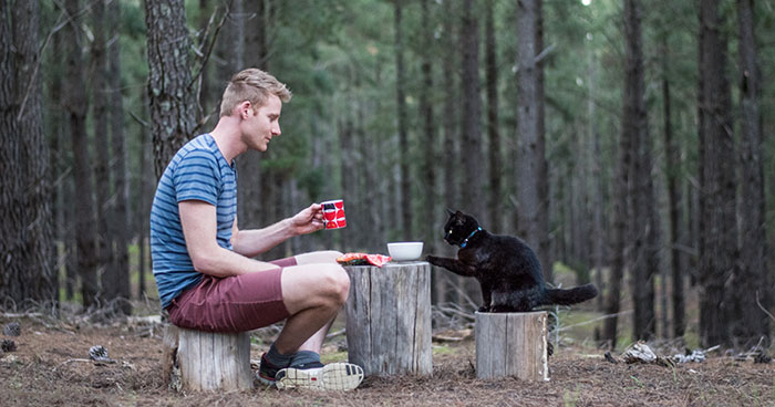 I Spent Over 3 Years Traveling With My Cat In A Campervan