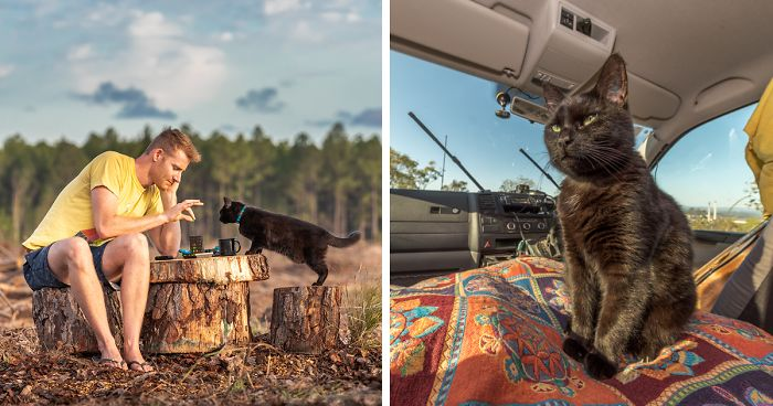 17f2831ff7 I Spent Over 3 Years Traveling With My Cat In A Campervan