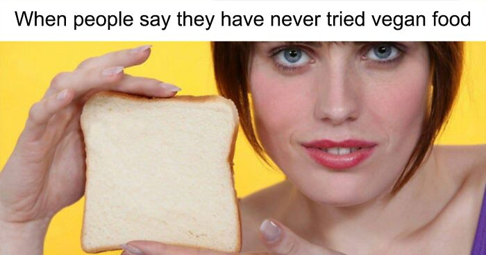 4e234df1f69 274 Hilarious Vegan Memes That May Change The Way You Look At Meat ...