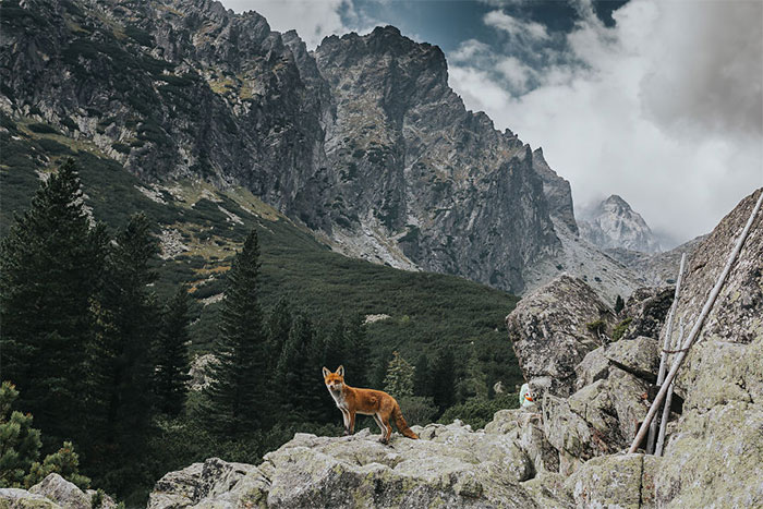 I Went To The Slovakian Tatras With My Girlfriend And Her Family. This Is What I Saw