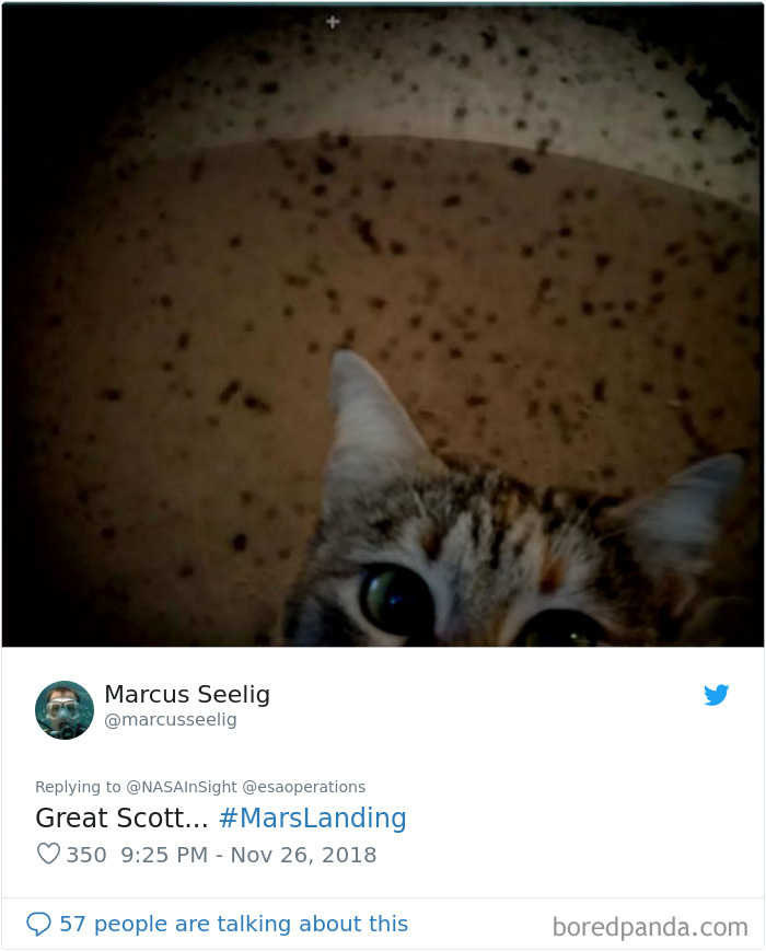 Nasa-Insight-Mars-Landing-Image