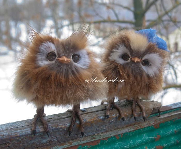 Artist Makes Incredibly Realistic Owl Toys