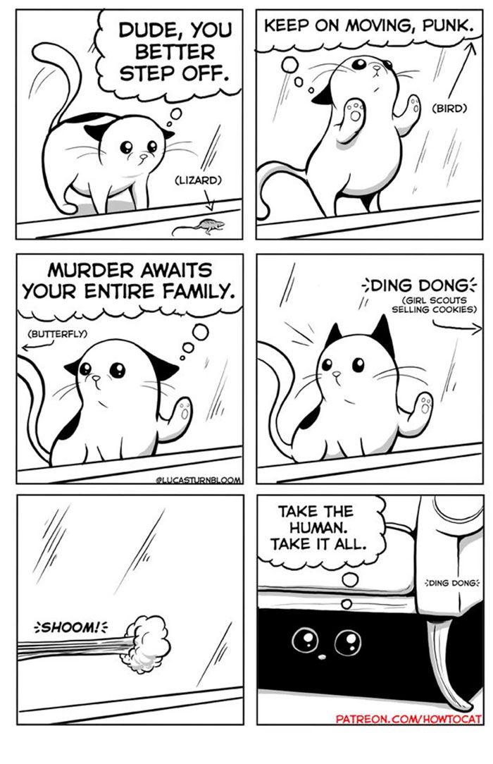 11 Comics For Cat Owners