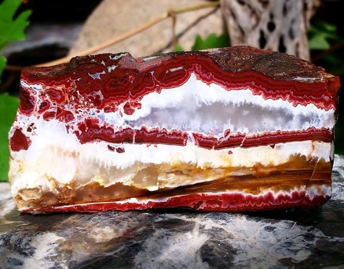 Saw This Rock And Thought It Was A Cheesecake