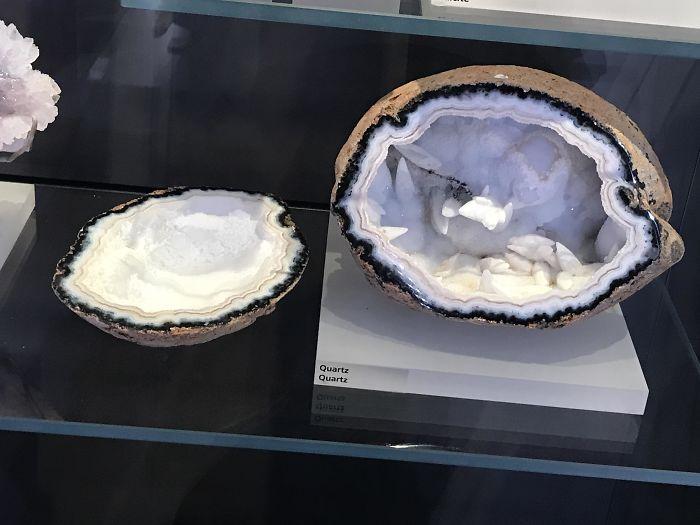 Forbidden Coconut