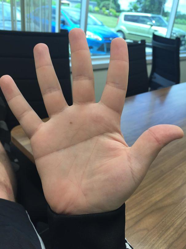I Have A Single Line Across My Palm