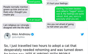 Gay Man Gets Turned Down From Adopting A Rescue Cat, So He Shares The Texts Online