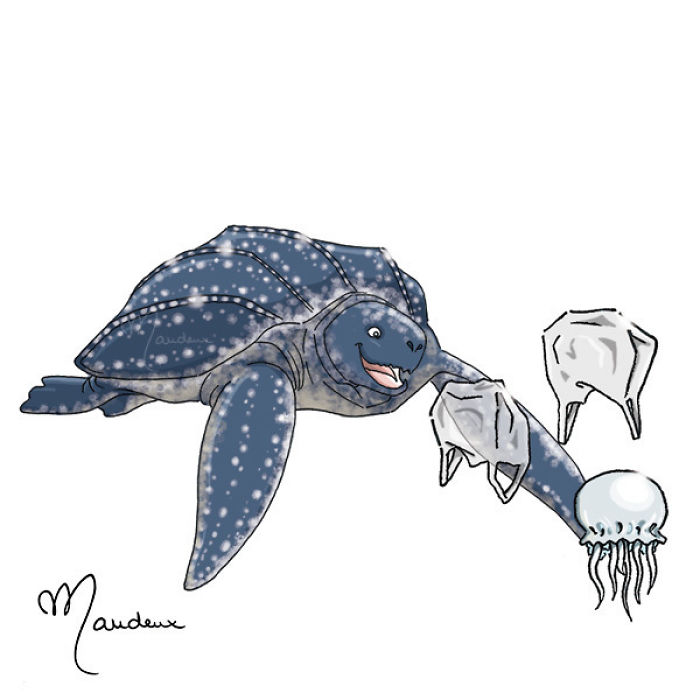Sea Turtles Are Confused With Plastic