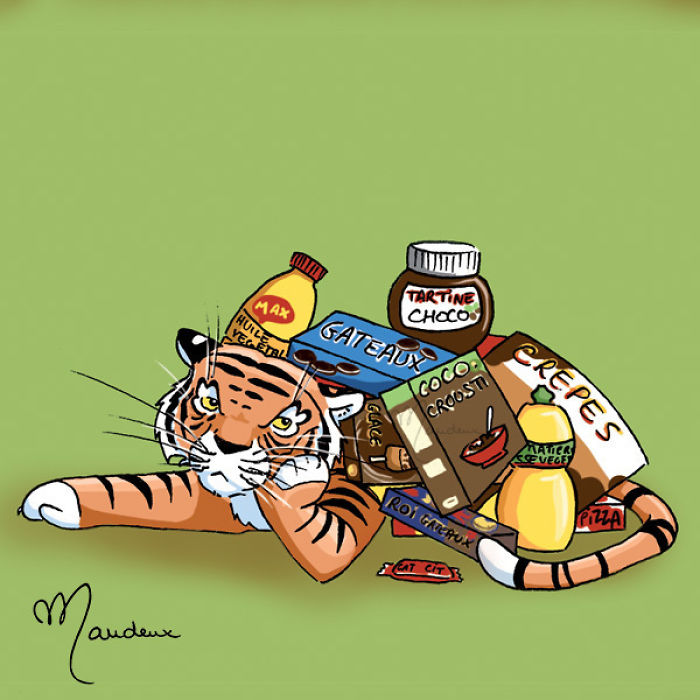 Palm Oil Growing Is A Big Problem Which Is Dangerous For All Inhabitants Of The Forests