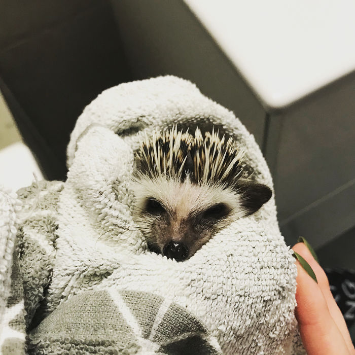 After Bath