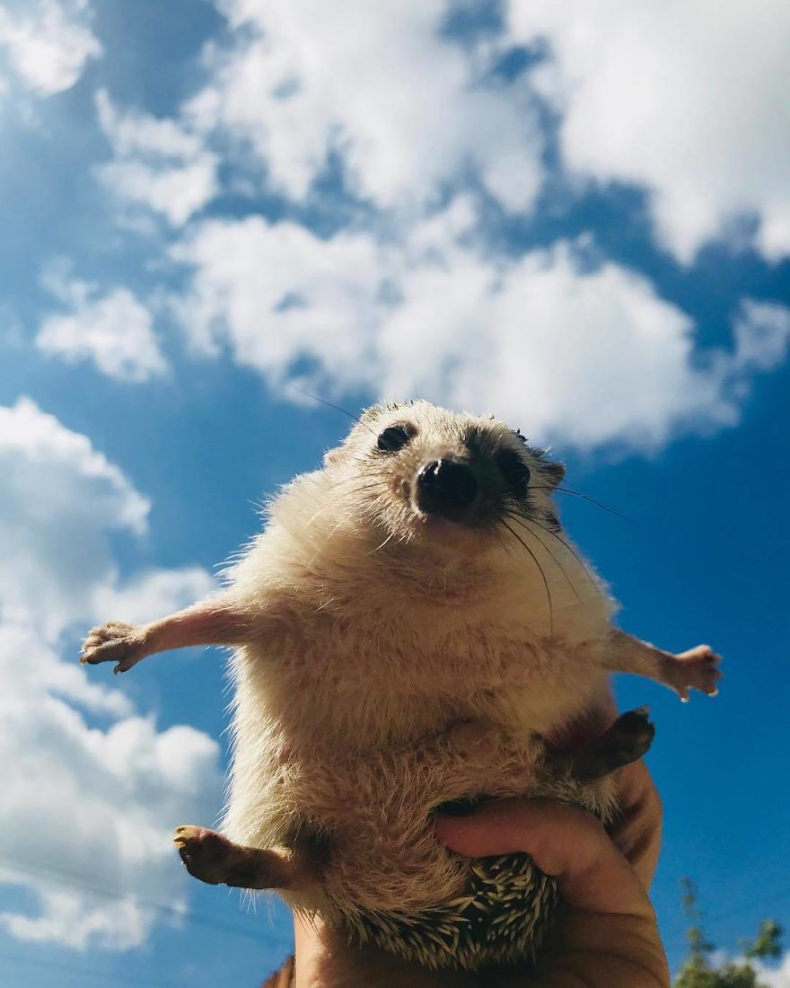 I Believe I Can Fly. I Believe I Can Touch The Sky