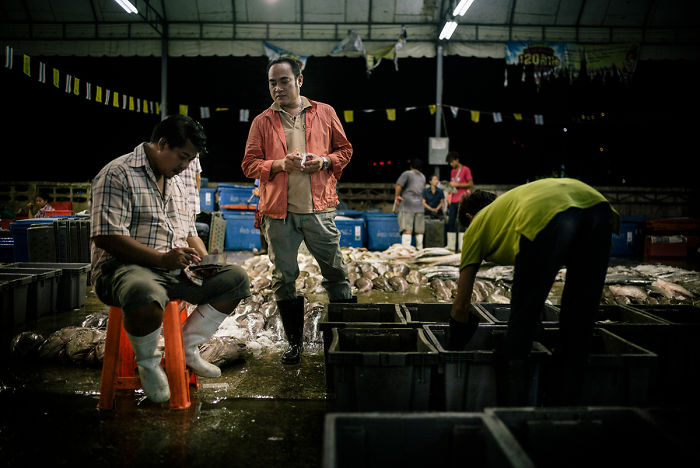 Illegal Burmese Workers Unload The Catch