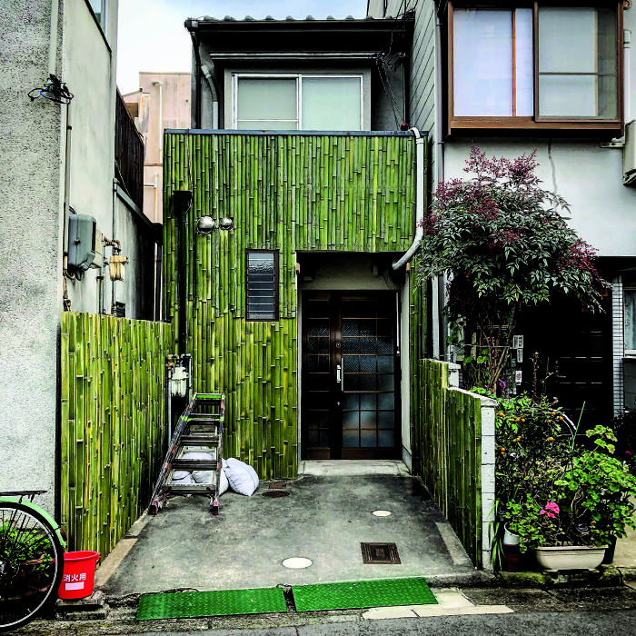 House With Bamboo Frontage: Still Freshly Green