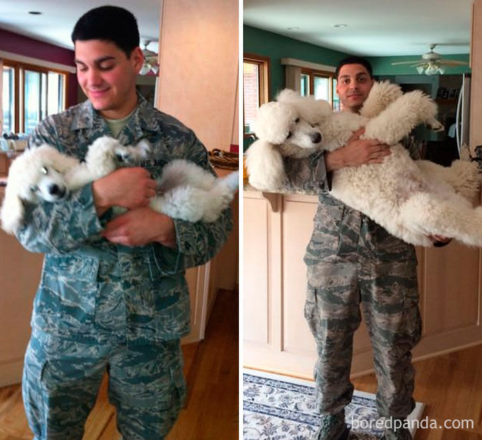 My Little Bro And Eli The Poodle, On His First And Last Day Of National Guard. 6 Years Apart