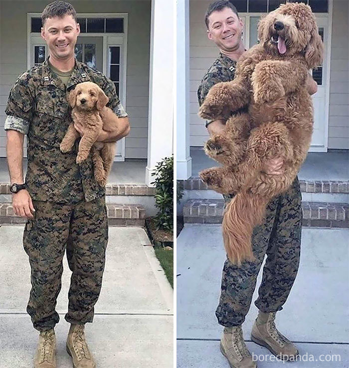 Before And After Deployment