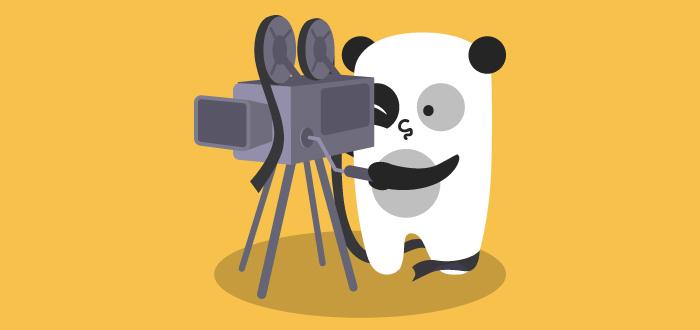 Cameraman For Crafty Panda