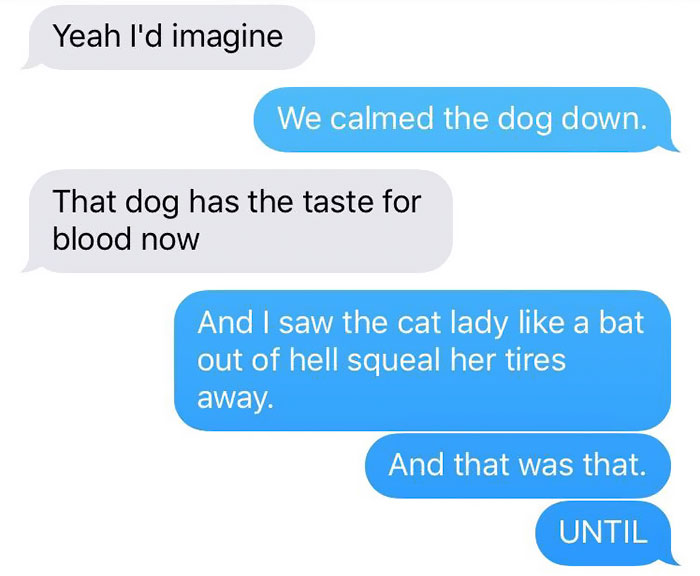 cat-dog-tail-retailer-walmart-story-11