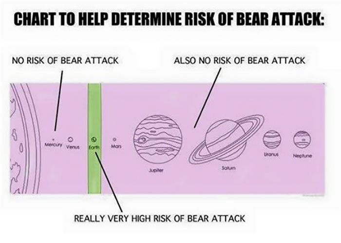 Chart To Determine Risk Of Bear Attack